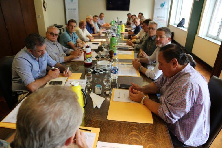 Reunión Consejo - 2
