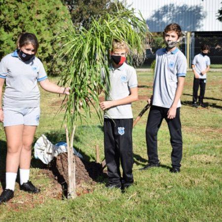 Alumnos plantan árboles 2