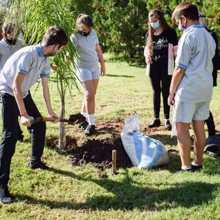 Alumnos plantan árboles 3